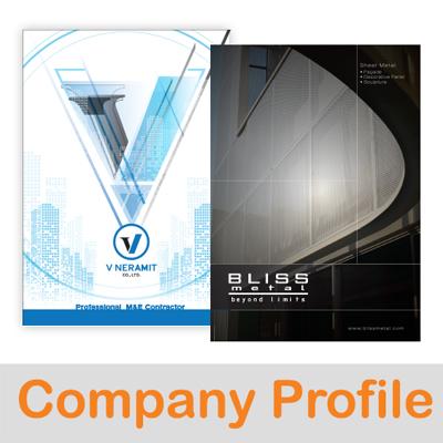 Company Profile Design- DayDreamingTeam